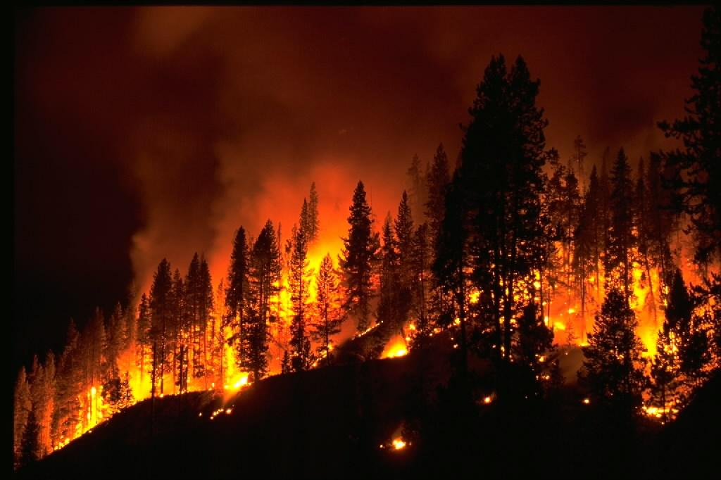 western us forest fires could double within 40 years