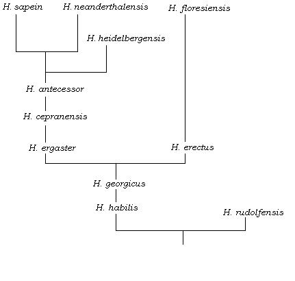 [Image: 10_18_2013_homo-tree.jpg]