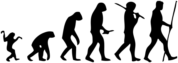 Homo Sapiens rsquo Family Tree May Be Less Complicated Than We