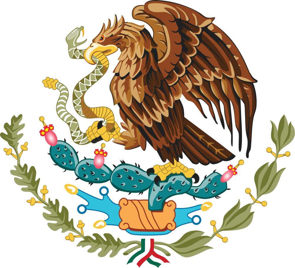 El águila real mexicana, símbolo de nuestra identidad | México ...