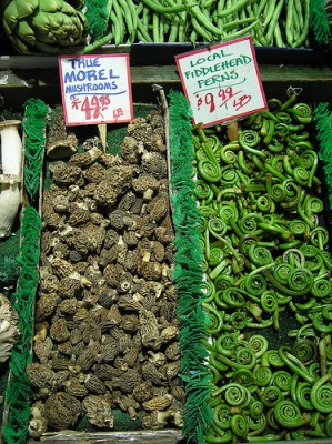 Morel mushrooms and fiddleheads, courtesy of Flickr user libraryman