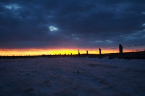 Sunrise over snowscape, courtesy of Flickr user DArcy Norman
