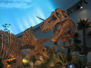 A T. rex and Triceratops at Dinosphere