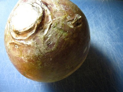 Rutabaga, courtesy of Flickr user Jodigreen