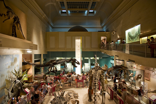 The Natural History Museum's Dinosaur Hall. Courtesy of Flickr user JSmith Photo