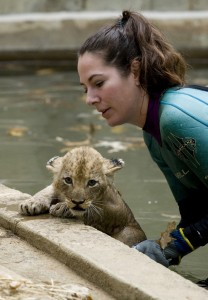 One of Shera's cubs gets a little boost from a zoo keeper to get out of the water. Mehgan Murphy, National Zoo.