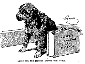 In 1895, Owney the dog went around the world in 132 days. Image courtesy of the National Postal Museum