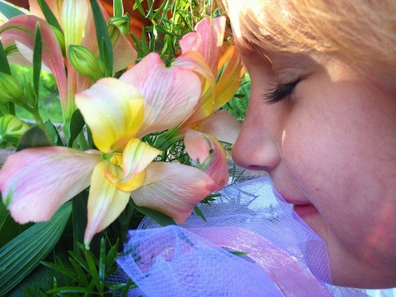 why do flowers smell good?  smart news  smithsonian, Beautiful flower