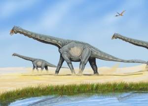 A restoration of Alamosaurus. From Wikipedia.