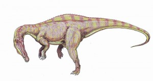 A restoration of the spinosaurid Suchomimus. From Wikipedia.