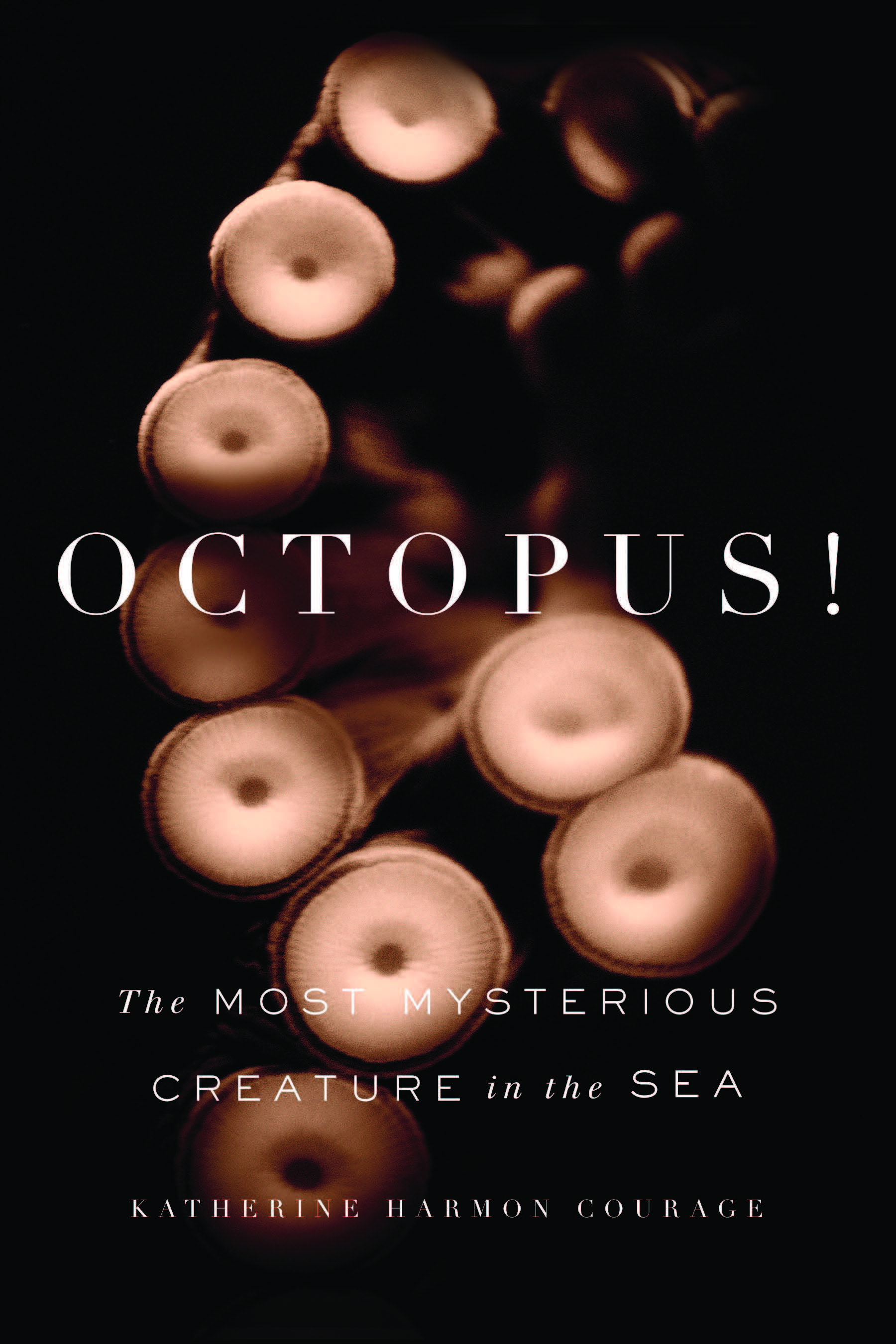 Ten Curious Facts About Octopuses Science Smithsonian Doing Your Own Electrical Work Is Dumb Dangerous And Illegal