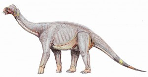 A restoration of Astrodon, a sauropod dinosaur which lived in prehistoric Maryland. From Wikipedia.