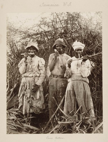 a comparison of slavery in the history of brazil and other american colonies Slavery and race in colonial latin america  as the slave trade database  shows colonial brazil was one of the principal destinations for.
