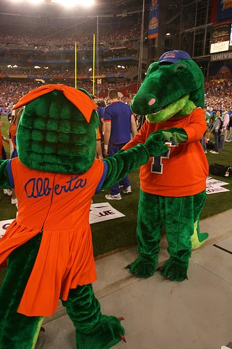 Florida Gators mascot