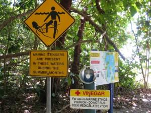 A sign near an Australian beach warns of the danger of jellies (photo by Sarah Zielinski)