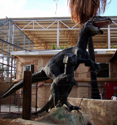 A pair of dinosaurs at a roadside attraction alongside Israel's Route 90. From Jeremy Price.