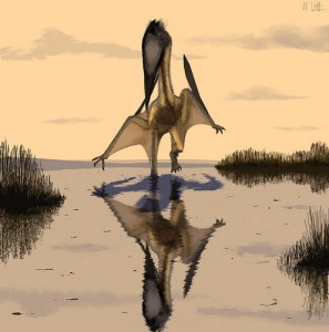 The pterosaur Lacusovagus as drawn by Mark Witton, one of the contributors to Pterosaur.net.