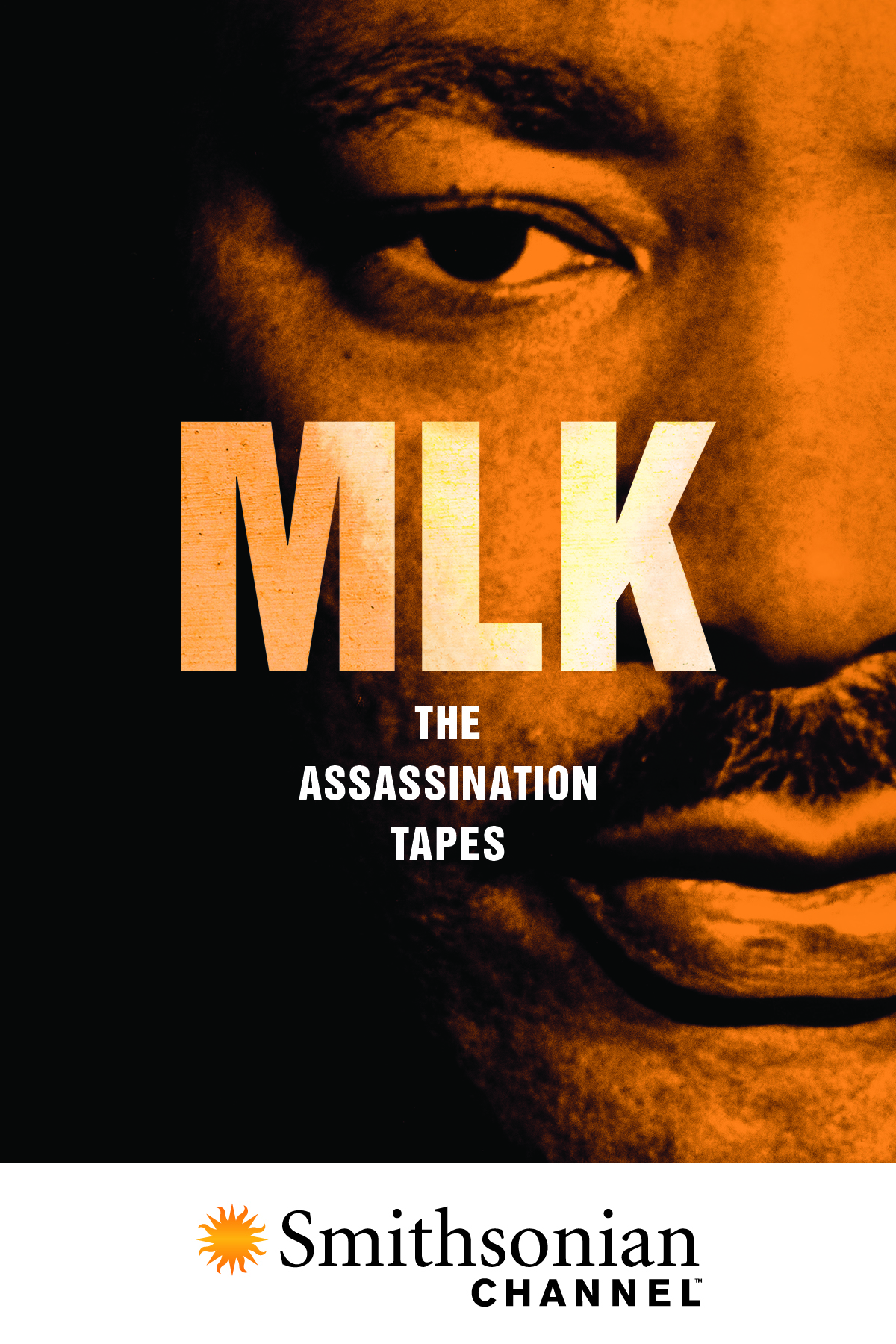 Research paper on mlk