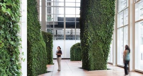 Indoor urban gardening ideas easy indoor plants for urban indoor urban gardens images galleries for indoor urban gardening ideas workwithnaturefo