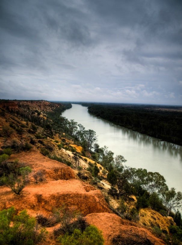 The Murray River seen from a tower in Renmark, Australia