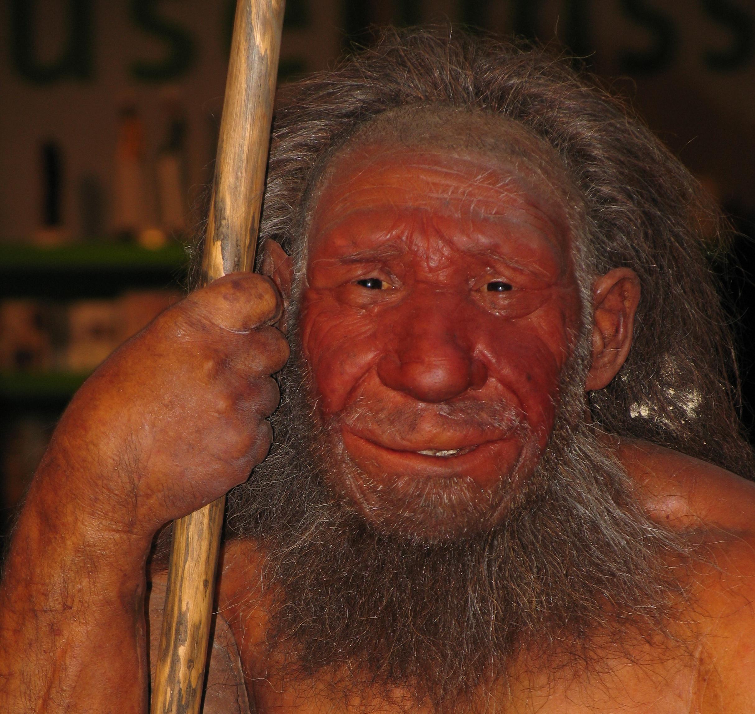 Innovations of the Upper Paleolithic