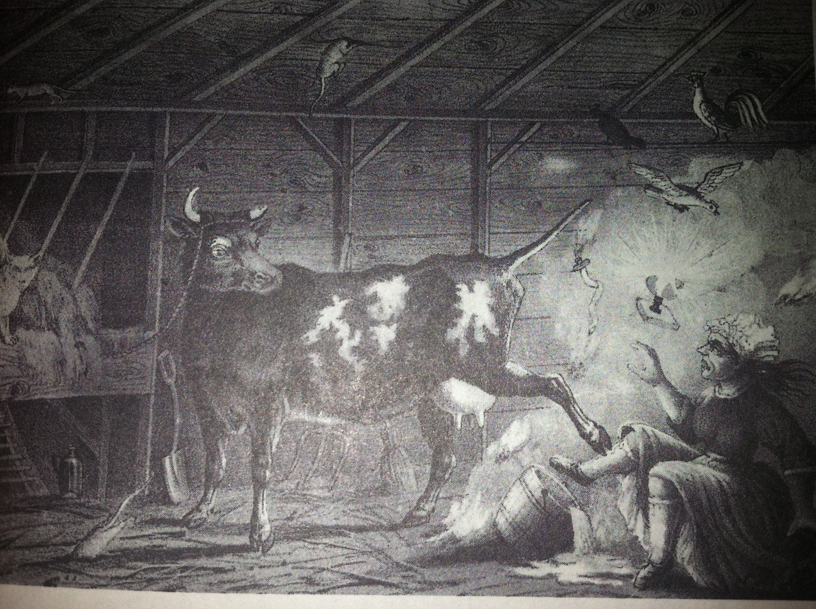 What Or Who Caused The Great Chicago Fire  History  Smithsonian The True Story Behind The Myth Of Mrs Oleary And Her Cow