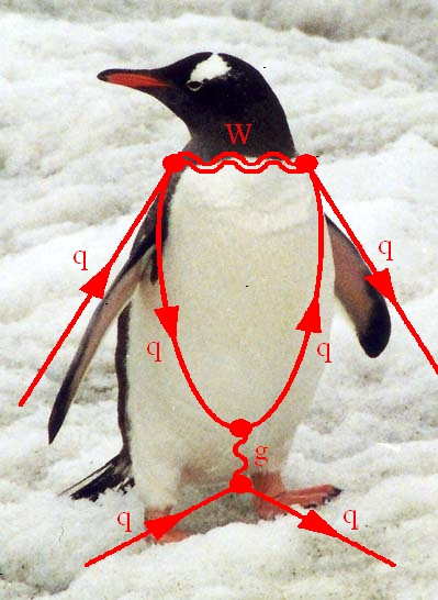 How A Physics Diagram Was Named After A Penguin