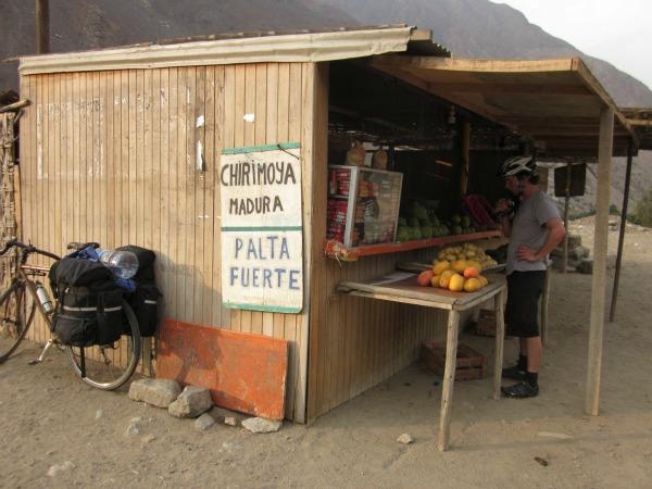cherimoya stand