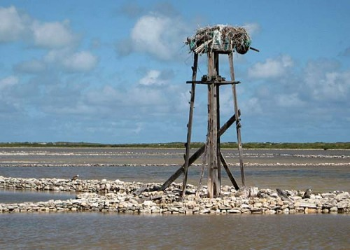 The remains of a windmill, once used to pump brine into the salt pans of the Turks and Caicos Islands.