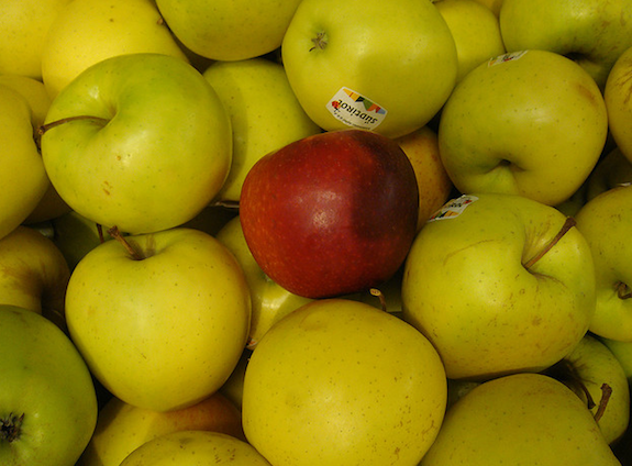 What are you really saying to your teacher when you hand over a polished apple on the first day of school? Photo by Flickr user ollesvensson.