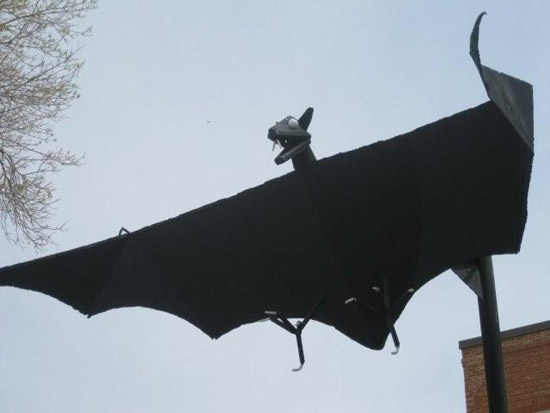 Bat in Belfry