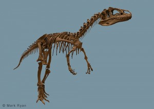 Big Al the Allosaurus. From Flickr user rynoceras.