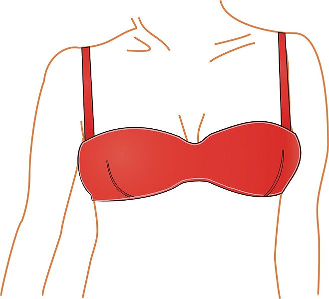 The Bra Is Being Reinvented   Smart News