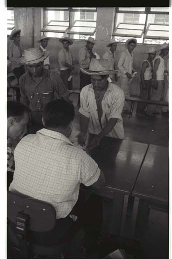 A prospective guest worker, or bracero, from Mexico shows the calluses on his hand to prove that his is a farm worker. Photograph by Leonard Nadel, courtesy of the National Museum of American History