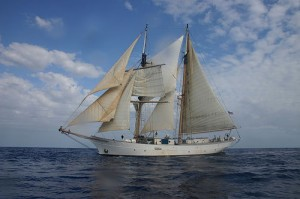 The SSV Corwith Cramer (courtesy of flickr user Liberté, Égalité, Safari)