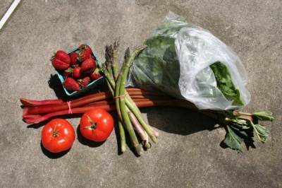 A half-share of fresh produce from Norman's Farm Market's CSA program