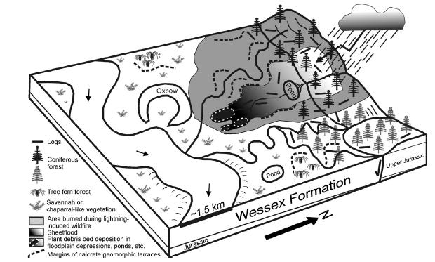 A diagram showing how rain could have triggered debris flows which preserved some of the Early Cretaceous fossils on the Isle of Wight. From Sweetman and Insole, 2010.