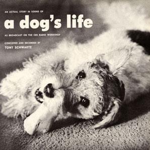dogslife.jpg