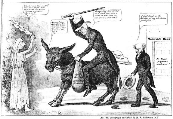 donkey andrew jackson