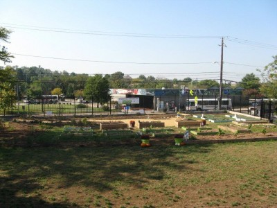 School garden at Savoy Elementary and Thurgood Marshall schools in Anacostia. Courtesy of Earth Day Network.