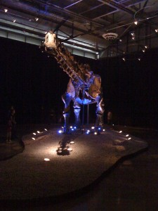 """Einstein"" the Apatosaurus on display in Mexico. From Flickr user Sultancillo."
