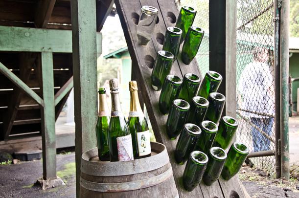 champagne riddling rack