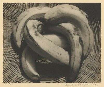 Bananas, 1930, by Edward Weston. Courtesy of the J. Paul Getty Museum, Los Angeles