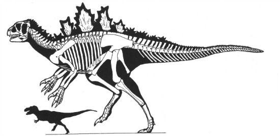 Can carbon dating be used on dinosaur bones coloring