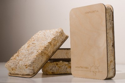 Greensulate is an environmentally friendly insulation made from mushrooms and agricultural byproducts. Photograph courtesy of Ecovative Design.