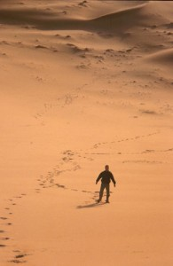 Without landmarks, we easily walk in circles (courtesy of flickr user helter-skelter)