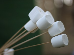 Would you have eaten the marshmallow? (courtesy of flickr user Jonas Norling)