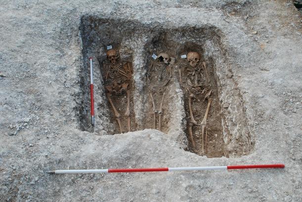 Medieval bones