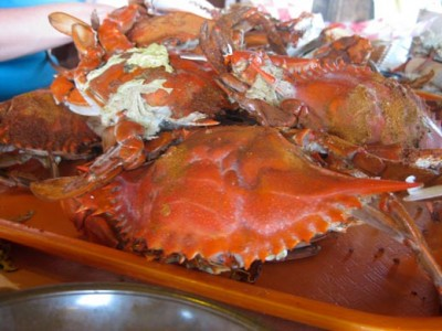 Old Bay on Chesapeake Bay crabs. Delicious. Image courtesy of the author.
