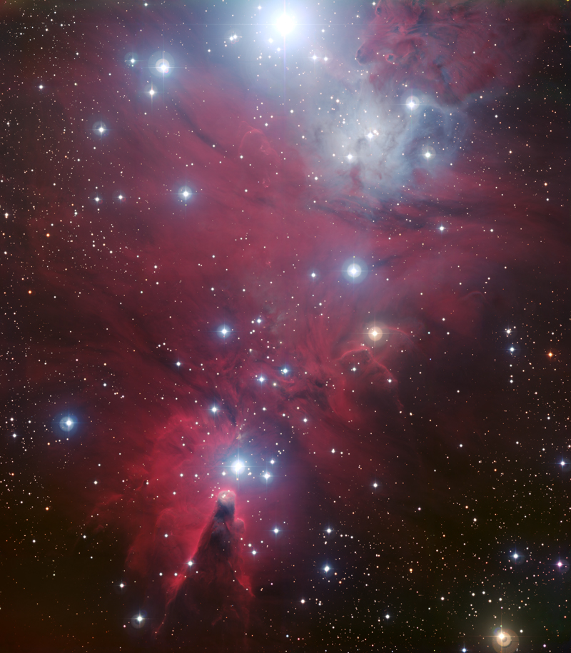 Christmas Tree Cluster, courtesy of ESO